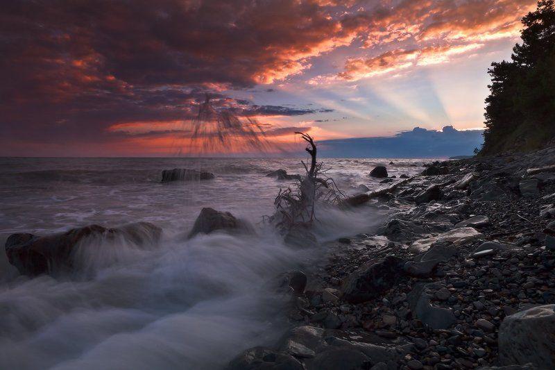 Про лето и море..photo preview