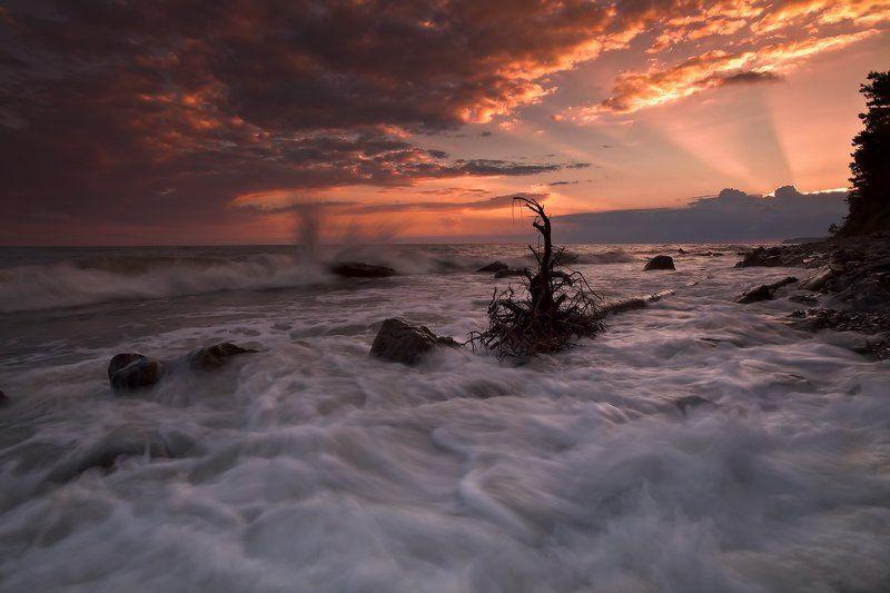 Морская пена...photo preview