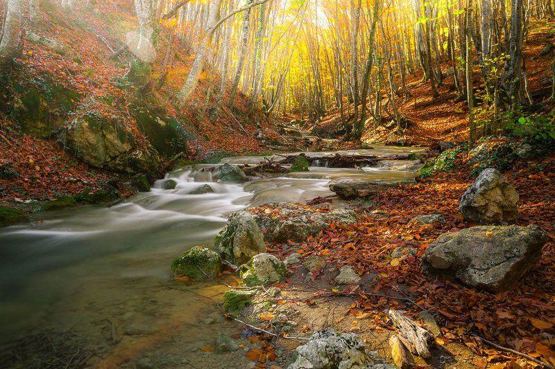 Крым, Осень, Речка photo preview