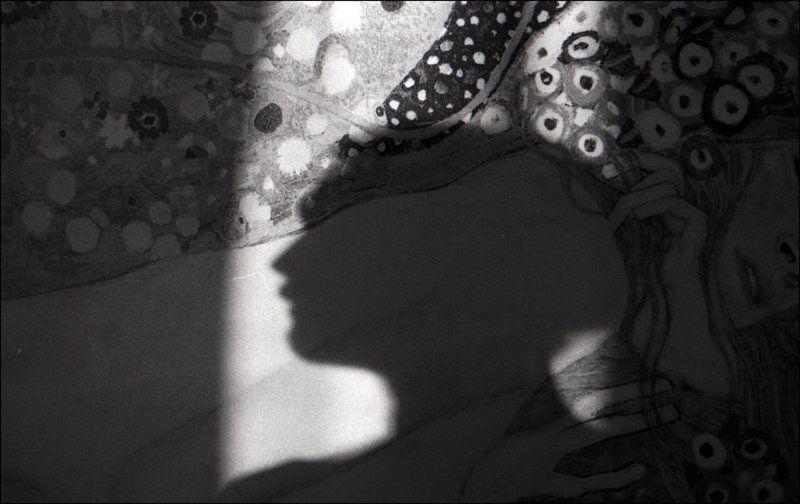 тарбеев, tarbeev, тень -photo preview