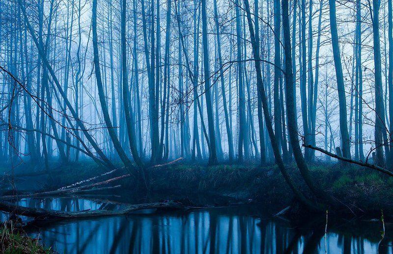 Синий туманphoto preview