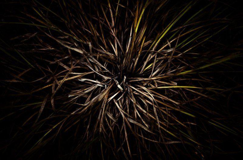 о травеphoto preview