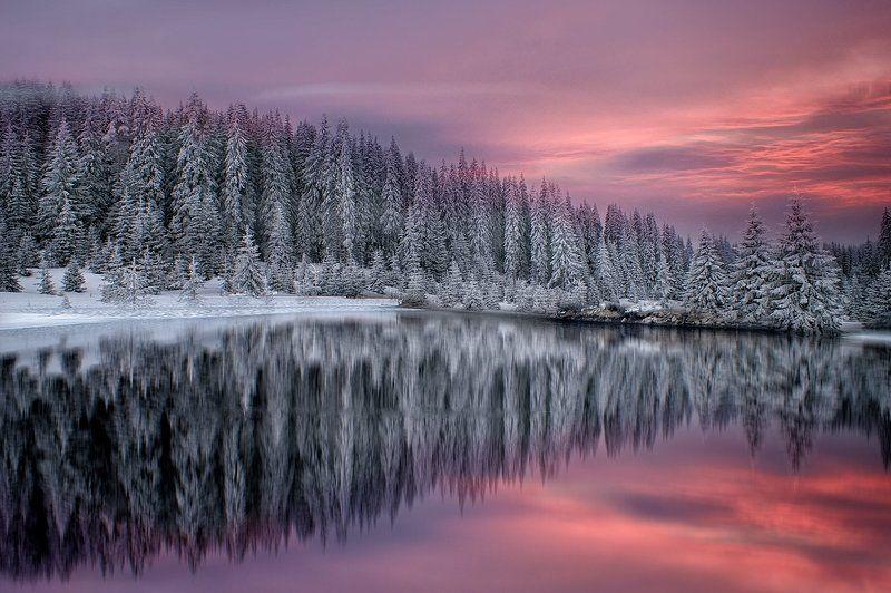 Зима в Родопиphoto preview