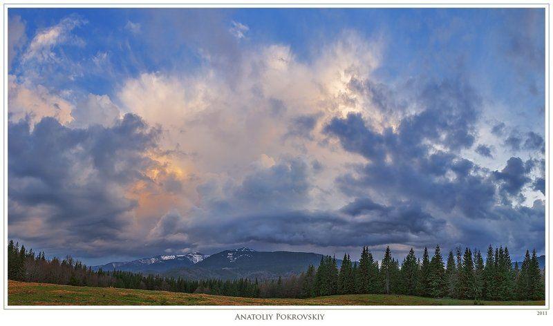 карпаты, весна, вечер, облака, дождь, ели, анатолий покровский Морфология и метаморфозы вечернего карпатского небаphoto preview