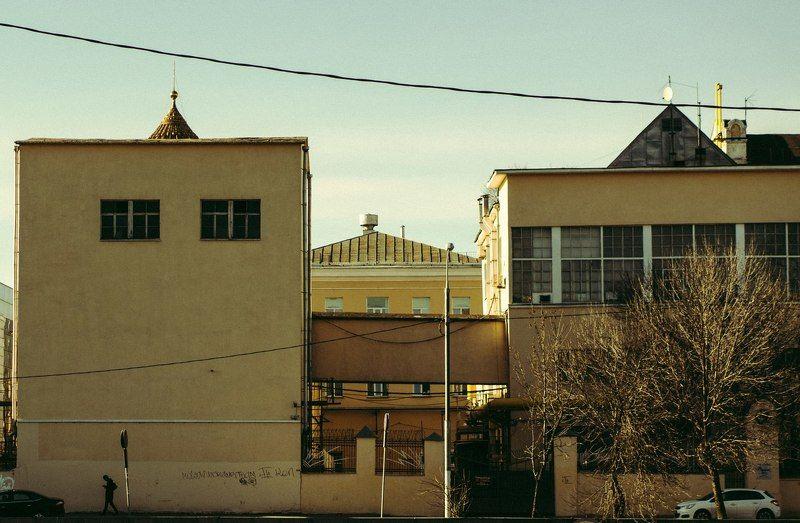 тарбеев, tarbeev -photo preview