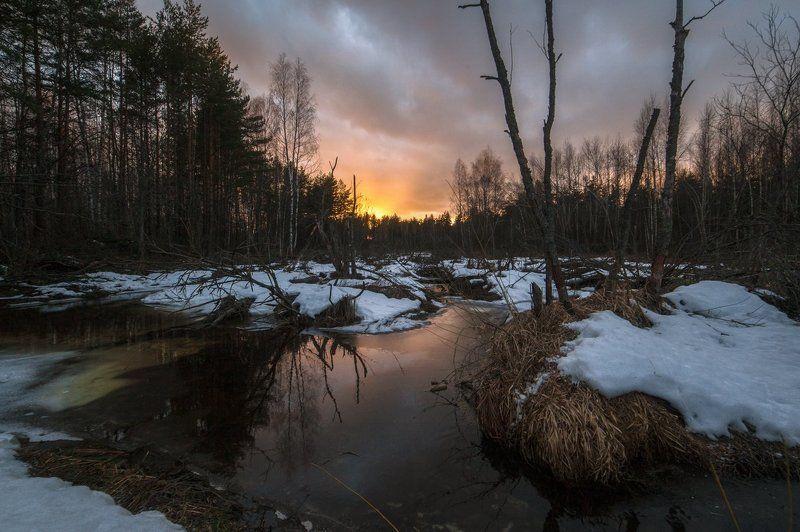 Весенний закат у лесного ручьяphoto preview