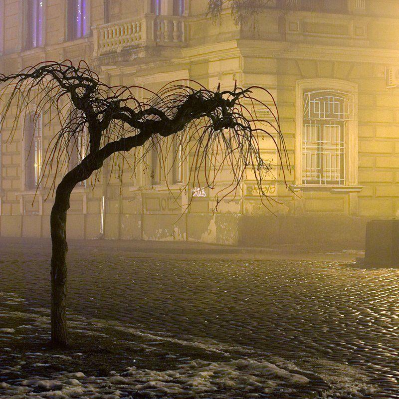 пейзаж, город, зима, ночь, туман, , дерево, одиночество, грусть, lad_i_mir Грустьphoto preview