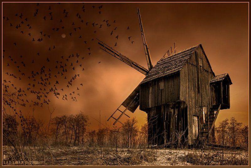 комп-арт, пейзаж, мельница, вороны, маг, на, поле, ветров, lad_i_mir Маг на поле ветровphoto preview