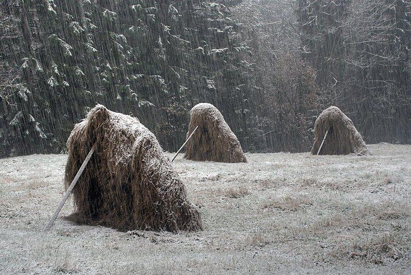 пейзаж, зима, снег, стихия, стога, lad_i_mir Под снежным напоромphoto preview