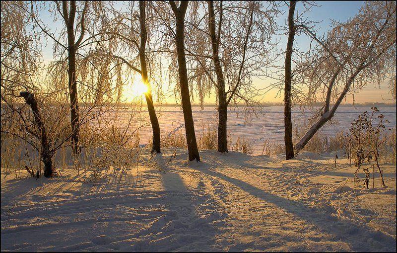 Зима в паркеphoto preview