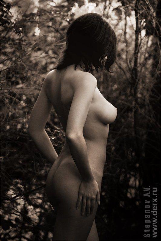 девушка в лесу, ню, nu Девушка в лесуphoto preview