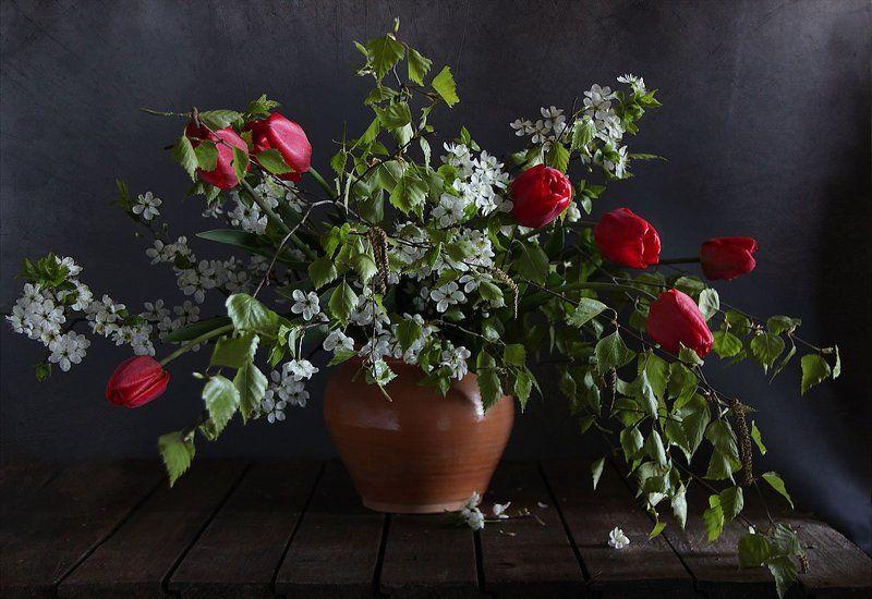 цветы, натюрморт Опять весна на белом светеphoto preview