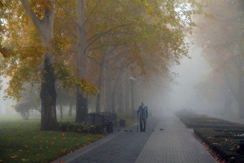 осень, туман, аллея, сквер, старик Инсталляция одиночестваphoto preview