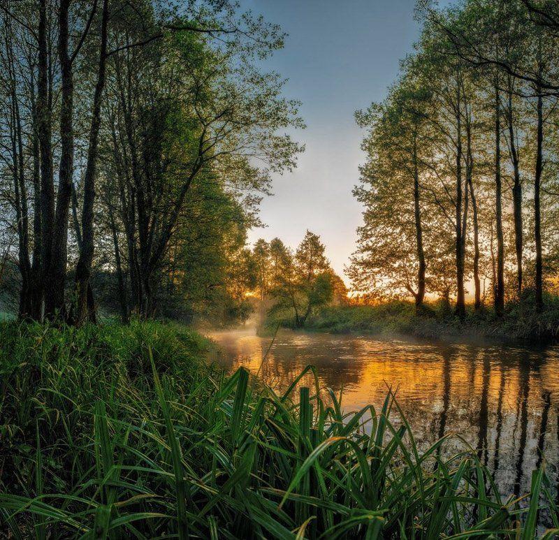 Dawn,, Fog, Light, Morning, River, Spring, Sunrise stretchy dawnphoto preview