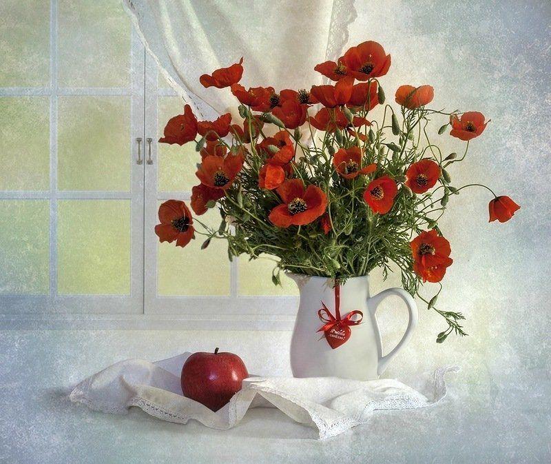 Весна, Май, Маки, Натюрморт, Цветы Красный май...photo preview