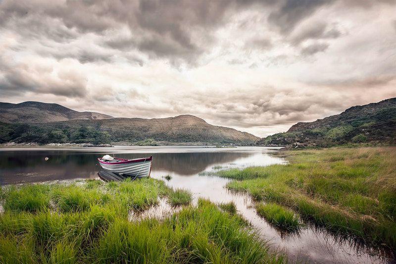 Taste of Ireland фото превью