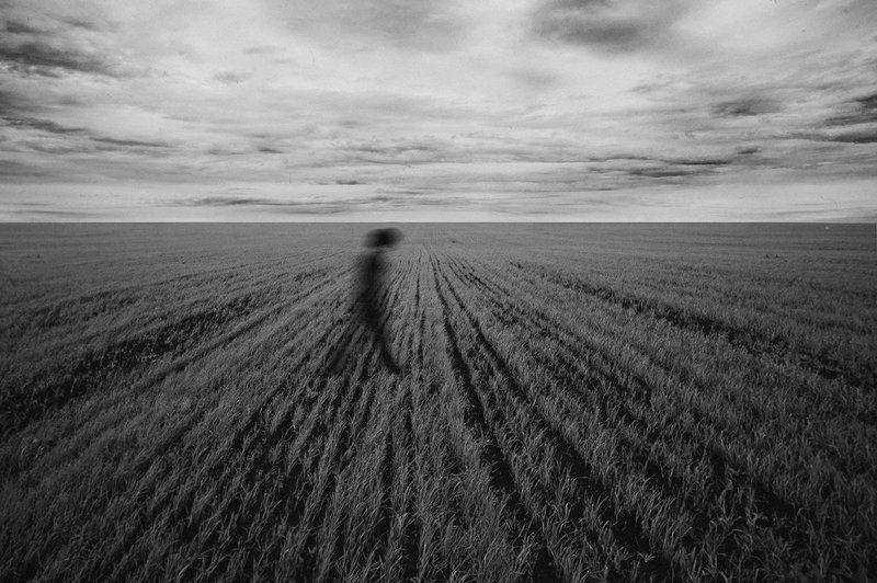 Ambient, B&w, Black & white, Field, Shadow, Soul, Walking, Душа, Настроение, Окружение, Поле, Прогулка, Тень, Черно-белое photo preview