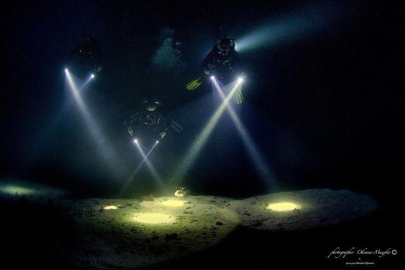 Ночное. Погружение.photo preview