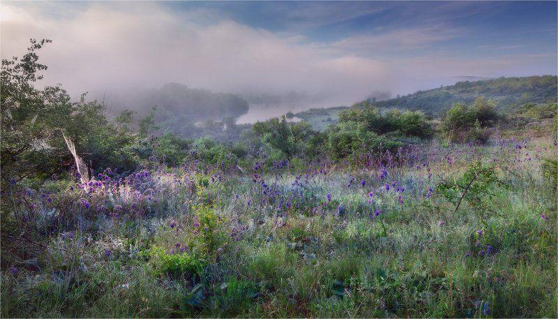 Утро на Южном Буге...photo preview