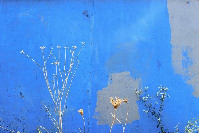 Цвета небаphoto preview