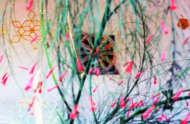 Circle,, Color,, Flowers,, India,, Metaphysics,, Индия,, Метафизика,, Окружности,, Цвет, Окружностиphoto preview
