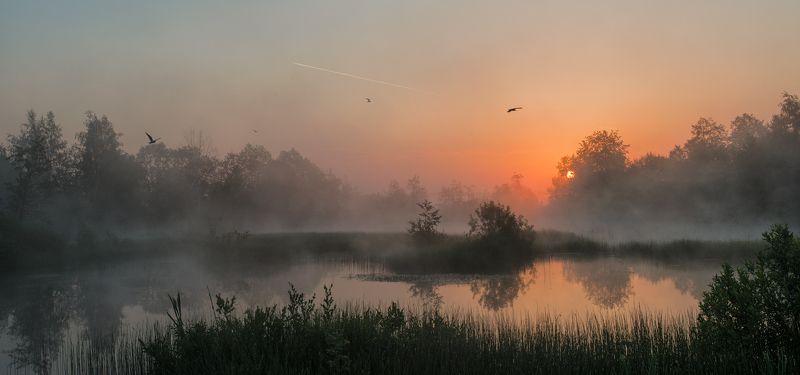 Утро чаекphoto preview