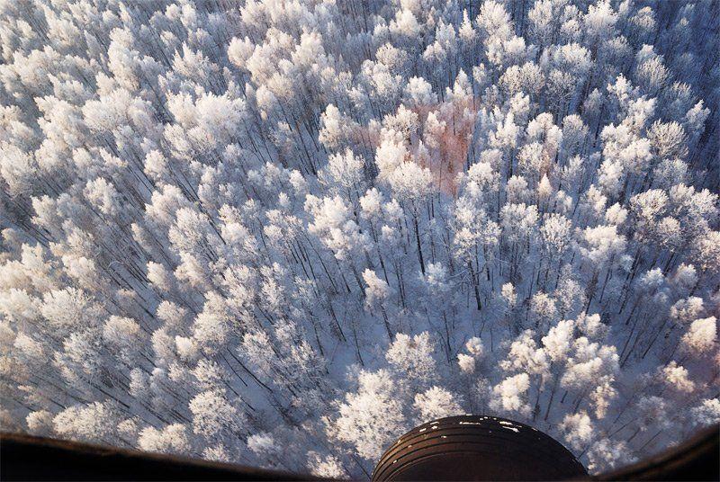лес, иней, вертолет, зима Отражается небо в лесу как в воде...photo preview