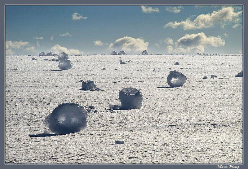 Перекати поле или снежные бубликиphoto preview