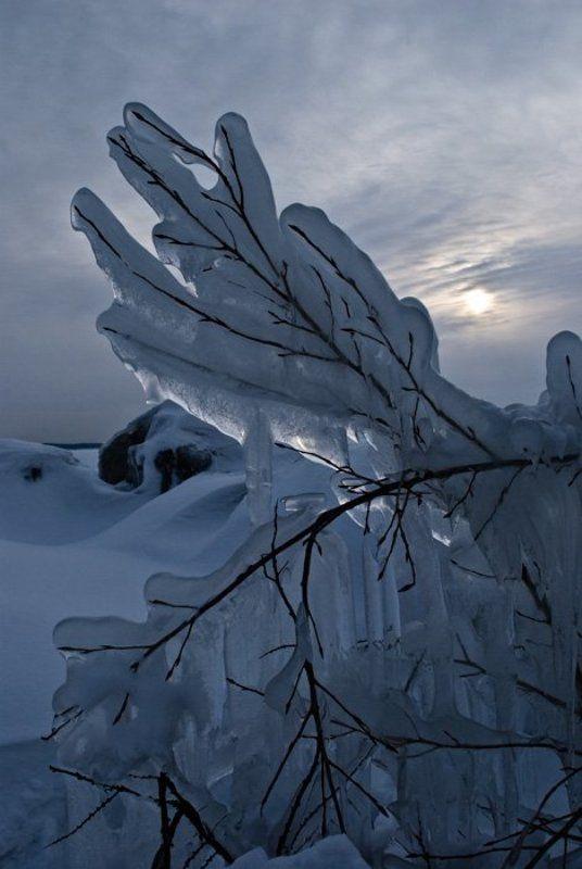 зима,обь photo preview