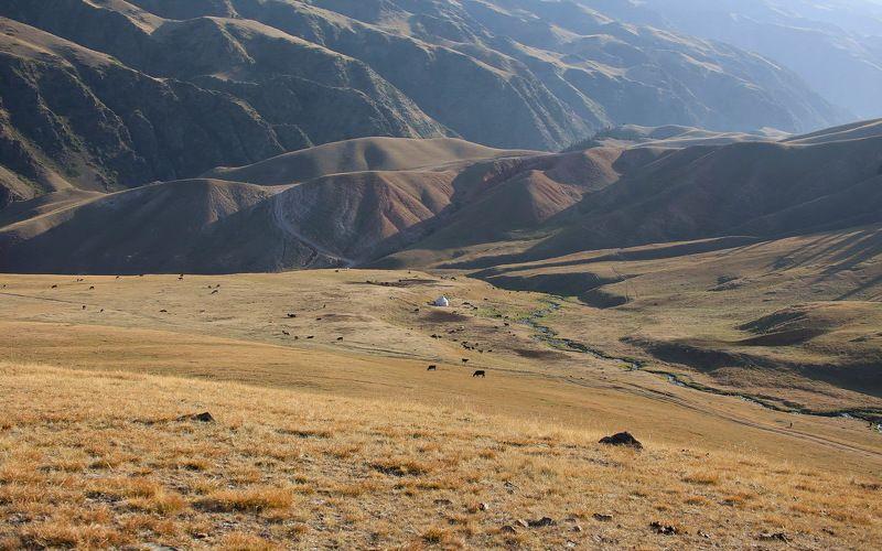 казахстан, , заилийское, алатау, ассы photo preview