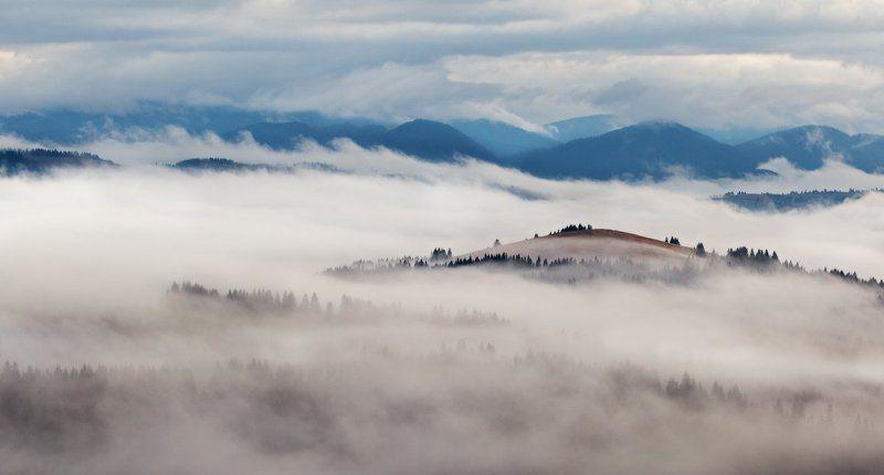карпаты, украина, горы, туман, утро, рассвет ...Туманные берега...photo preview