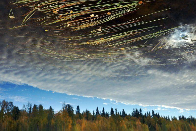 Осеннее небо Карелииphoto preview