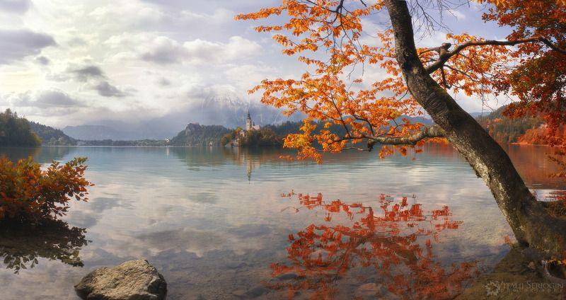 Осень наступилаphoto preview