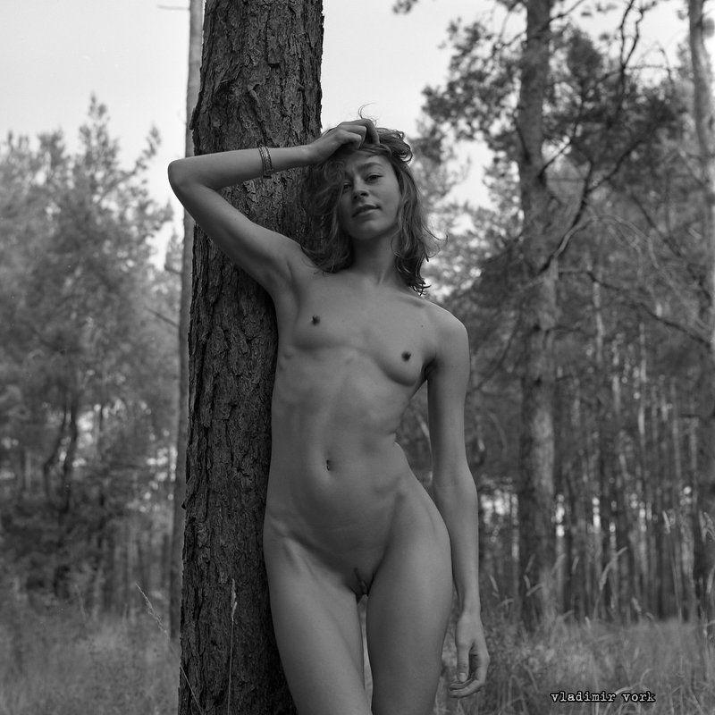 Art nude, Film, Fine art, Girl, Hasselblad, M-format, Nature, Vladimirvork, Wood relationshipphoto preview
