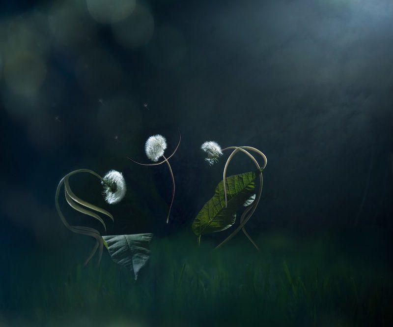 джаз, музыка, серенада, трио Moonlight Serenade...photo preview
