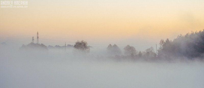 Деревья, Поле, Природа, Рассвет, Солнце, Трава, Туман Туманная велопрогулка по Бучеphoto preview