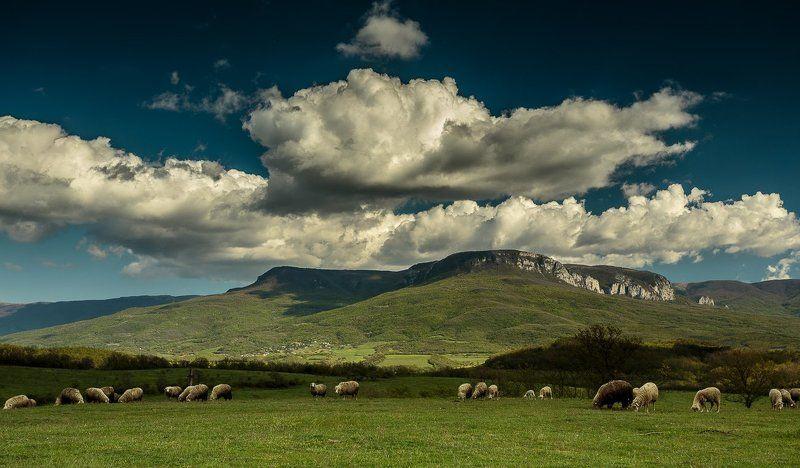 Вид на плато Бойкаphoto preview