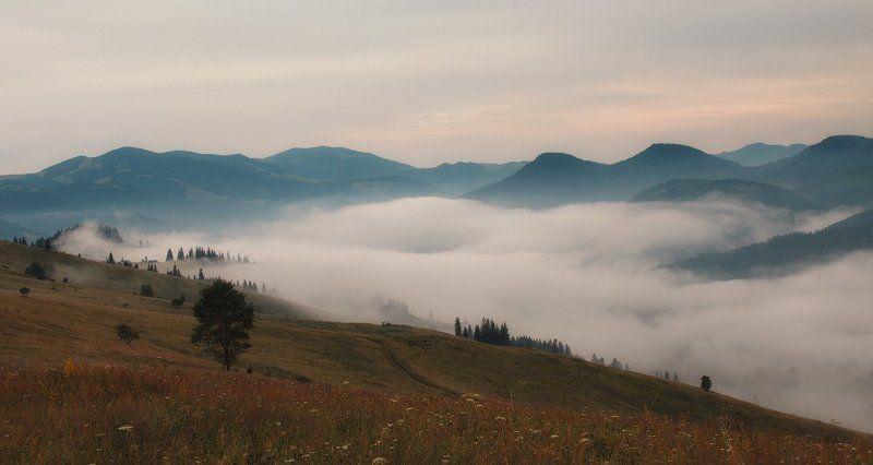 Над туманамиphoto preview