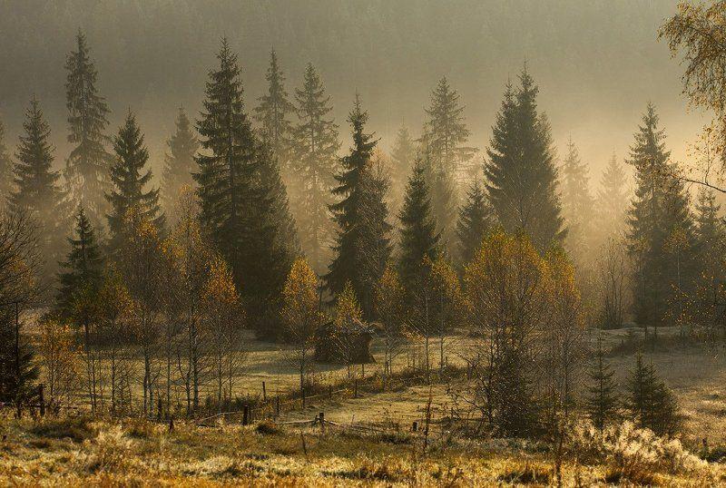 Осенний стелется туман...photo preview