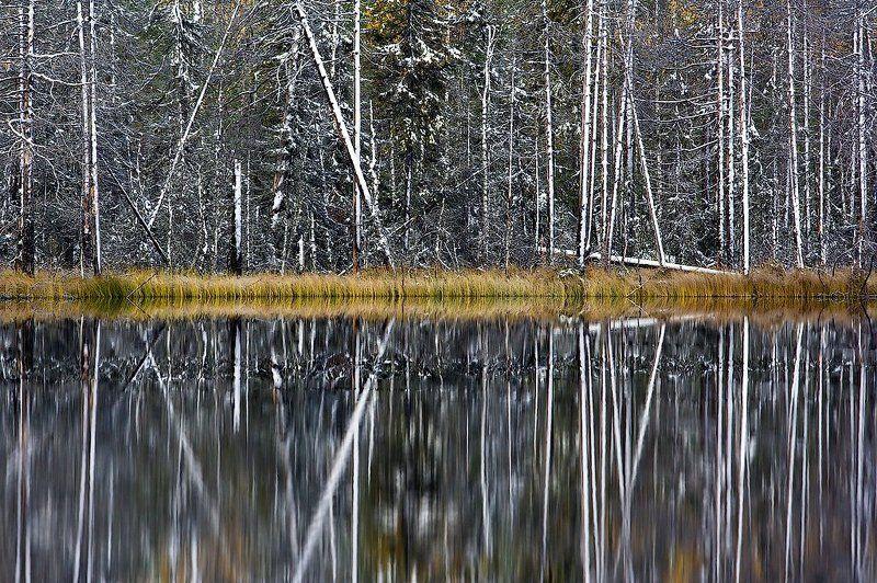 Осенний штрихкодphoto preview