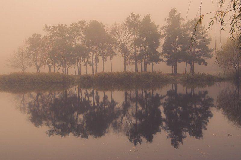 Сказочный туманphoto preview