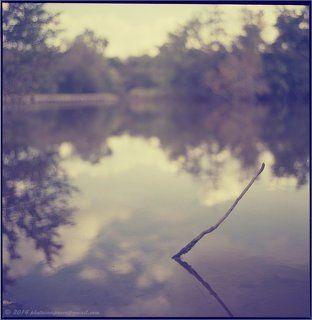 Осень минималиста...