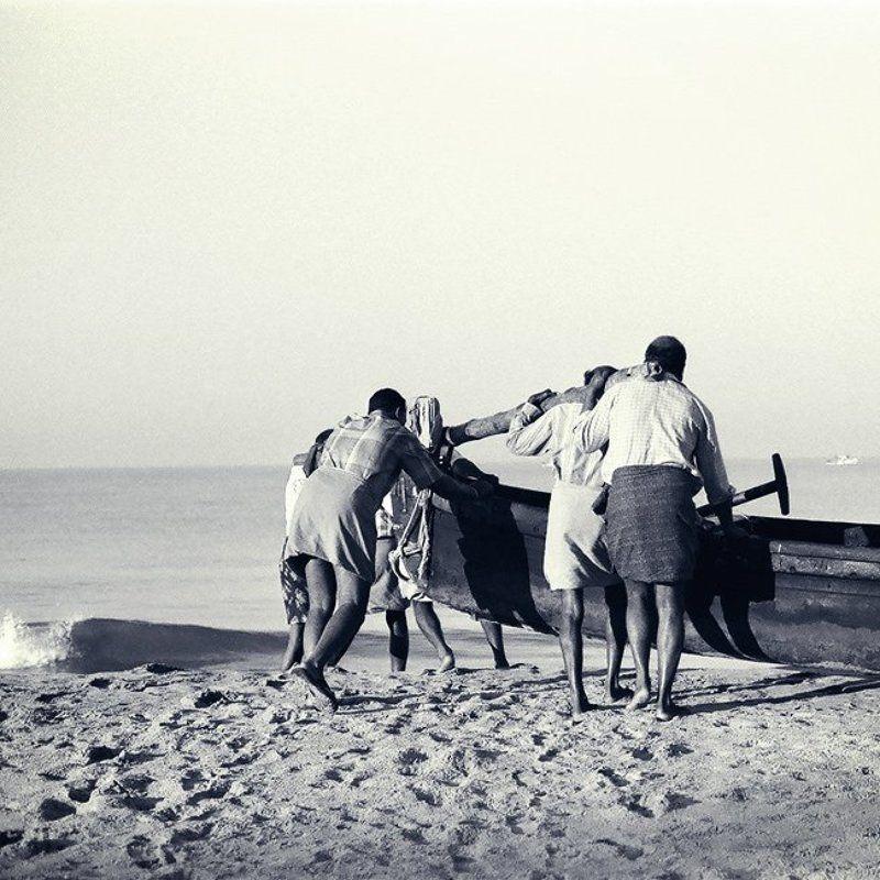 индия, керала, india, kerala, kanghanghat толкай.photo preview