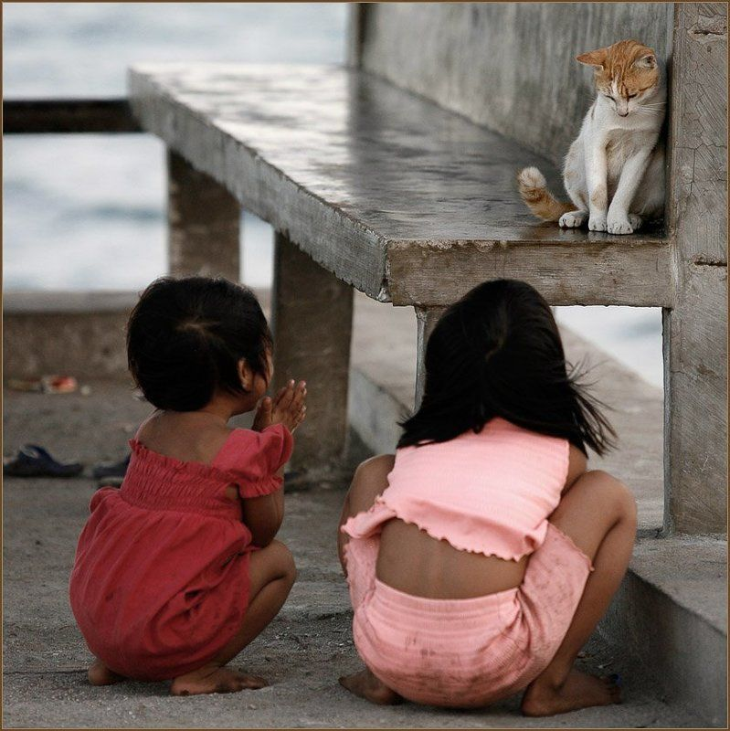 дети, девоча, кошка, гили, траванган, индонезия Как везде и во все временаphoto preview