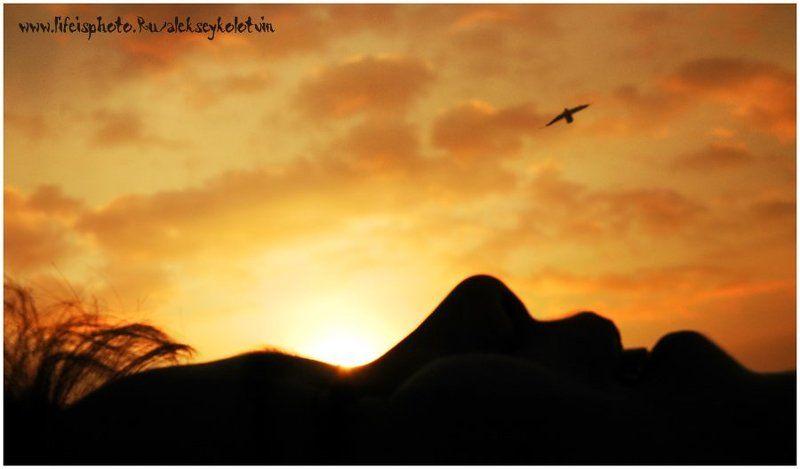 Я на солнышке лежу...photo preview