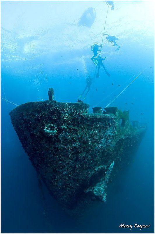 зайцев, обучение, подводной, фотографии, , красное, море, рэк Thistlegorm. Bow.photo preview