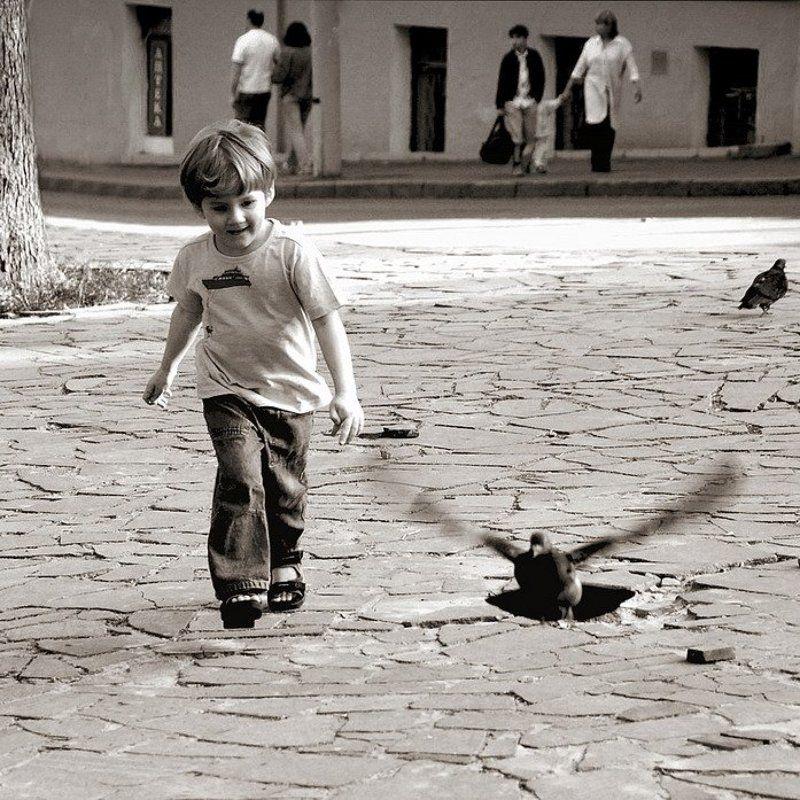 мальчик, голуби ловец птицphoto preview