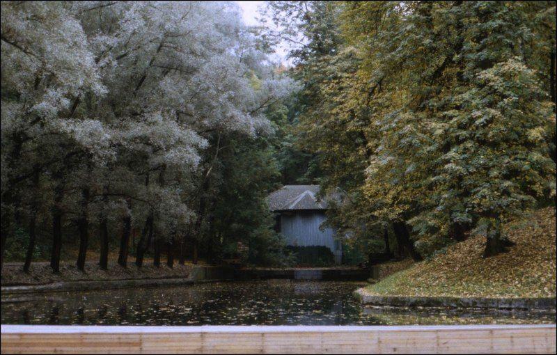 тарбеев, сентябрь, пленка, парк горького, москва, позитив, слайд Сентябрьphoto preview