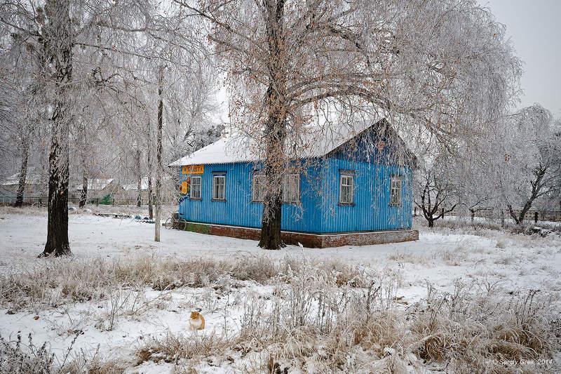 Cat, Rime, Winter, Зима, Изморозь, Кот, Почта Почтаphoto preview