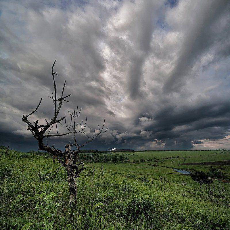 Сейчас заплачут облака...photo preview